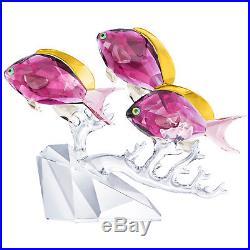 Anthias Fish Trio On Coral Water Collection 2019 Swarovski Crystal 5428652