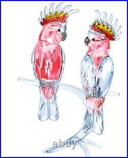 Authentic New in Box $869 Swarovski Pink Cockatoos Bird Pair #5244651