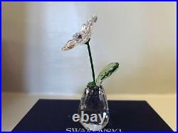 Authentic New in Box Swarovski Flower Dreams Daisy AB Crystal 5529233 PWP 2020