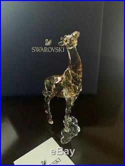 Baby Giraffe SCS EXCLUSIVE 2018 Swarovski Crystal 5302151 Brand New in Box