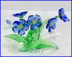 Forget-me-not, Flower Crystal Swarovski Authentic MIB 5374947