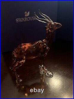 Gazelle Scs Member Exclusive 2018 Swarovski Crystal 5301551