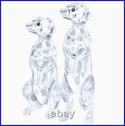 NIB Swarovski Meerkats Pair Loving Couple Clear Crystal #5135929