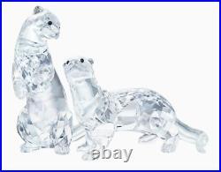 NIB Swarovski Otters Pair Loving Couple Clear Crystal #5385060