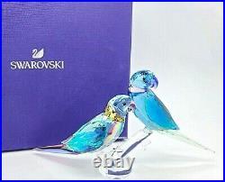 New 100% SWAROVSKI Jungle Beats Parakeet Couple Fife & Fifer Figurine 5577124