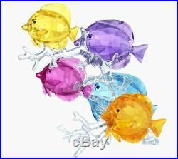 New in Box Authentic $999 SWAROVSKI CRYSTAL RainBow Fish #5223195