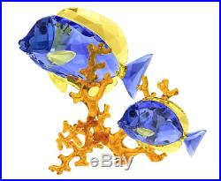 Nib $529 Swarovski Crystal Doctorfish Blue Fish Coral Tropical Sea Life 5223194
