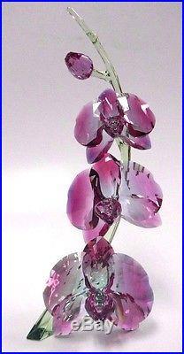 Orchids Stunning Flowers Unique Gradient Fuchsia Crystal 2017 Swarovski #5243561