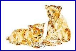 REDUCED Swarovski SCS A. E 2019 Amur Leopard Cubs 5428542 100% Authentic