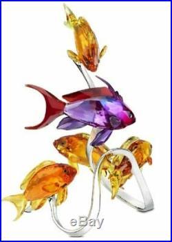 Retired Sea Goldies Fish Family Topaz Stunning 2011 Swarovski Crystal 1083778