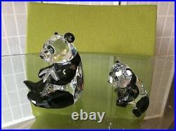 Retired Swarovski Crystal ENDANGERED WILDLIFE PANDAS #900918 MIB withCOA