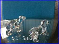 Retired Swarovski Crystal POLAR BEAR CUBS MOONLIGHT Figurine #1079156 MIB withCOA
