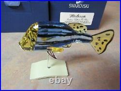 SWAROVSKI 656974 CATUMBELA LIGHT SAPPHIRE CRYSTAL EXOTIC FISH WithBOX