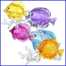 Swarovski Crystal Rainbow Fish Family. New In Box