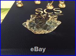 Swarovski Crystal Scs Annual Edition 2013 Cinta Elephant New In Box Nr
