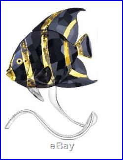 SWAROVSKI Crystal French Angelfish 1083776 Jonquil Morada Fish NEW OPEN BOX