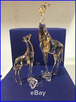 Scs Ae Mudiwa & Baby Giraffe 2018 Swarovski Crystal 5301550-5302151