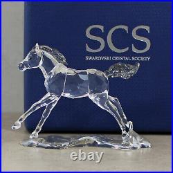 Swarovski 5004728 2, 2014 SCS Annual Edition Esperanza Foal
