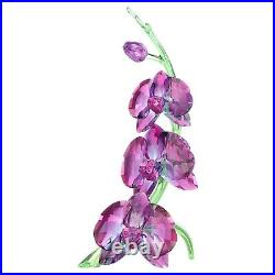 Swarovski (5243561) Orchids Fuchsia Rain Flower Crystal Figurine