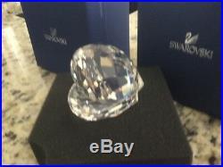 Swarovski Clear Crystal Figurine SHELL WITH PEARL #14389 BNIB RETIRED RARE
