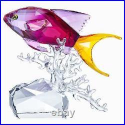 Swarovski Crystal Anthias Fish #5494699 Brand Nib Ocean Stunning Save$$ F/sh