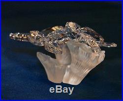Swarovski Crystal Baby Sea Turtles Retired 826480 Figurine Signed Brand New Box