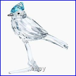Swarovski Crystal Blue Jay Figurine #5470647 Brand Nib Bird Cute Save$$ F/sh