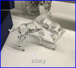 Swarovski Crystal Figurine #627637 Horses Foals Original Box Retired 2011