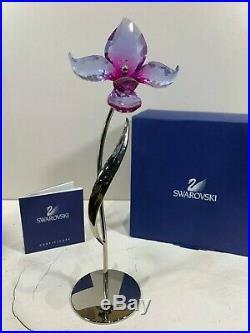 Swarovski Crystal Figurine Dororia Paradise Fuchsia Rain Flower 681542 MIB WithCOA