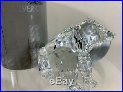 Swarovski Crystal Figurine Grizzly Bear Sitting 7637 000 006 / 243880 MIB WithCOA