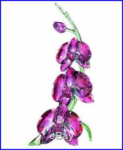 Swarovski Crystal Figurine Orchids Fuchsia Colored 5243561 MIB WithCOA
