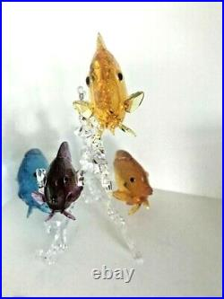 Swarovski Crystal Figurine Rainbow Fish Family 5223195
