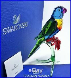 Swarovski Crystal Figurine Rainbow Lorikeet Paradise Bird parrot 5136832 NEW MIB