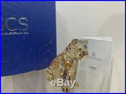 Swarovski Crystal Figurine SCS Lion Cub Brown Member Exclusive 5135896 MIB WithCOA