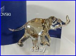 Swarovski Crystal Figurine Young Elephant Cinta Baby SCS 1142862 MIB WithCOA