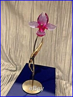 Swarovski Crystal Flower DORORA, FUCHSIA RAIN withOriginal Box & COA 681542
