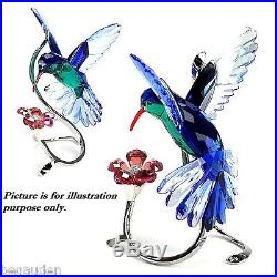 Swarovski Crystal HummingBird Bird Figurine 1188779 ($740) NIB
