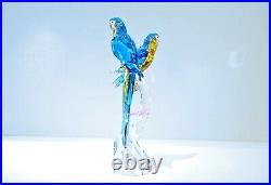 Swarovski Crystal Macaws Lovely Bird 5301566 Brand New in Box