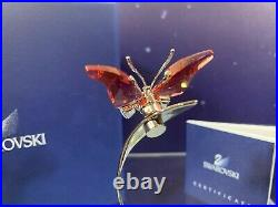 Swarovski Crystal Mint Figurine Paradise Butterfly Alava Padparadscha 861936 MIB