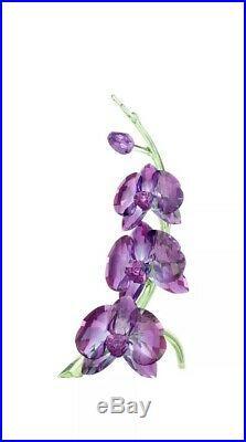 Swarovski Crystal Orchids Figurine 5243561