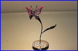 Swarovski Crystal Paradise Butterfly Amara Fuchsia Rain # 861937 Mint In Box