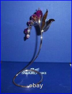 Swarovski Crystal Paradise Dacea Fuchsia Flower #945871 Mint