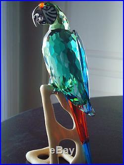 Swarovski Crystal Paradise Macaw Bird Object RETIRED MINT Parrot Figurine 685824