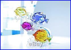 Swarovski Crystal Rainbow Fish Family Colorful Sea 5223195 Brand New in Box