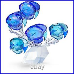 Swarovski Crystal School of Fish BNIB 5493705