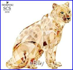 Swarovski Crystal Scs Annual Edition 2019 Amur Leopard Sofia 5428541. New In Box