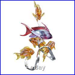 Swarovski Crystal Sea Goldies Topaz Colorful Fishes 1083778 NIB with COA