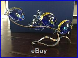 Swarovski Crystal Surgeon Fish Scuba Blue 1034023