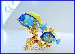 Swarovski Doctorfish Couple Tropicla Ocean Sea Blue 5223194 Brand New In Box