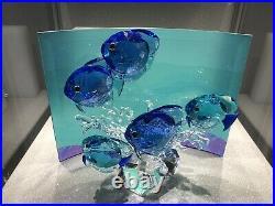 Swarovski Fish Crystal Display